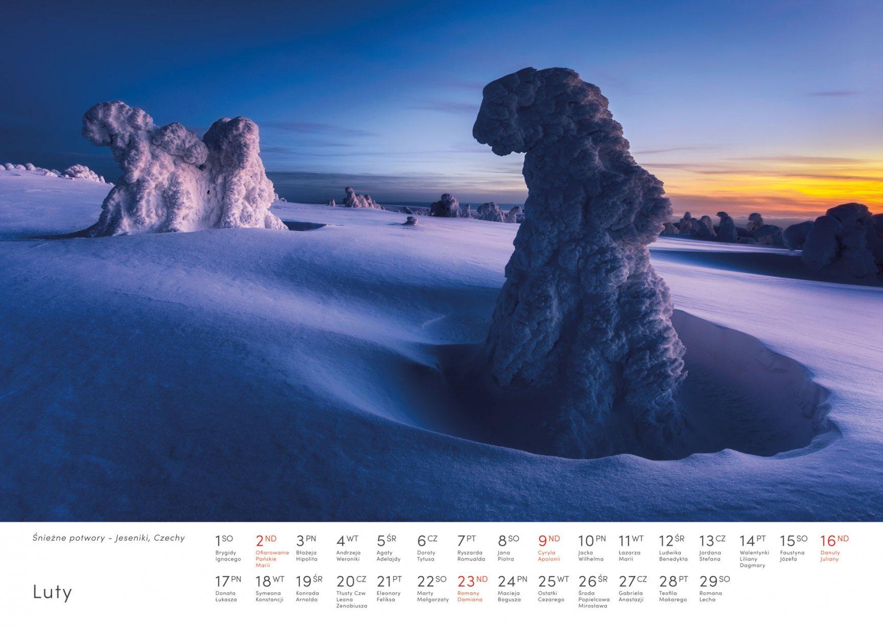 Kalendarz krajobrazy 2020 - Luty - Piotr Kałuża - Oblodzone drzewa